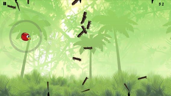 أرشد الطيور اللطيفة لتخطي العقبات التي تواجهها