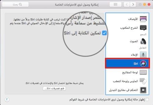 واجهة خيارات قسم Siri