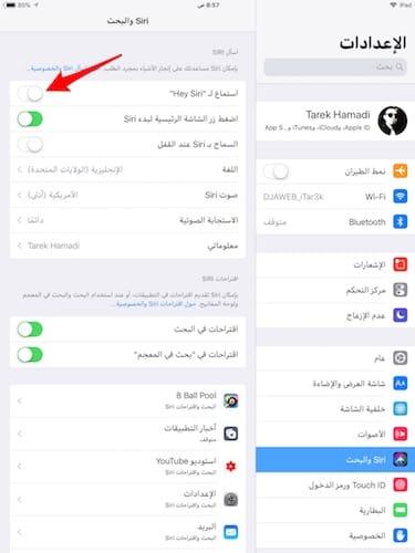 واجهة خيارات إعدادات Siri